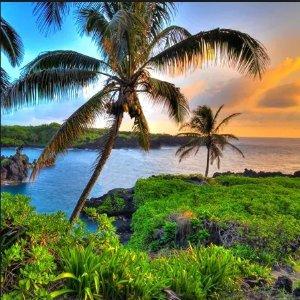 往返35,000里程起Delta 达美航空飞夏威夷里程票闪购价 即将截止