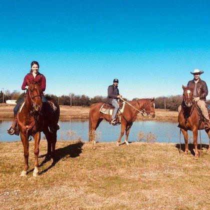 达拉斯周边牧场骑行课程2人票