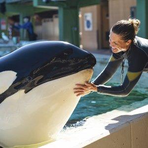 仅需$91 一买享2年 变相5折圣地亚哥 Seaworld 海洋世界年票特惠