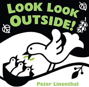 Amazon.com: peter linenthal books