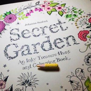 €8.09起收 超治愈Secret Garden 秘密花园填色本 宅家期间减压必备