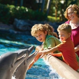 From $79.99 For Two DayTwo Day Ticket to SeaWorld San Diego