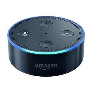 黑色 Echo Dot 2