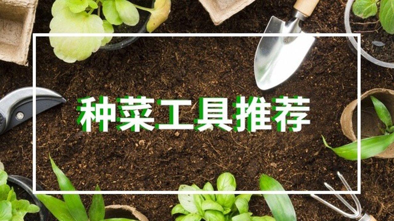 在家种菜DIY好物推荐   新手种植套装、升高花床、种植袋、土壤怎么选,看完种菜一步到位!