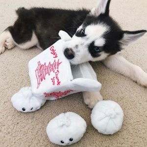 Plush Dog Toys & Squeaky Toy Dumplings for Dogs at BarkShop