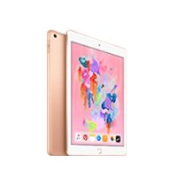Amazon.com : Apple iPad (Wi-Fi, 32GB) - Gold (Latest Model) : Gateway
