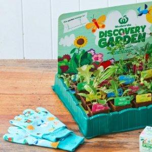 24种kit可选 集可爱绿植Woolworth 最新折扣图表更新 满$30送盆栽种子套装