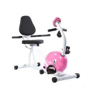 Sunny Health & Fitness Magnetic Recumbent Bike Exercise Bike, 220lb Capacity, Monitor, Pulse Rate Monitoring - P8400