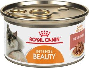Royal Canin Intense Beauty Thin Slices in Gravy Canned Cat Food, 3-oz, case of 24 - Chewy.com