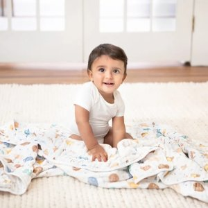 ADEN + ANAIS小熊维尼主题 经典纱布毯