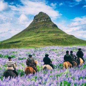 直飞往返冰岛$329起冰岛航空 北美往返欧洲机票大促 2月-6月日期