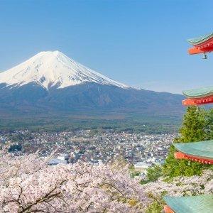 $1199起 游览富士山 +平安神宫等日本东京+京都8天跟团旅行 美国多地出发