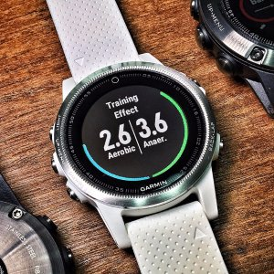 立减$250 用运动记录生活限时特惠:Garmin Fenix 5S 运动手表(白表带)