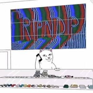 独家85折 T恤£20起RIPNDIP 精选潮衣独家热促 收无敌可爱的小贱猫