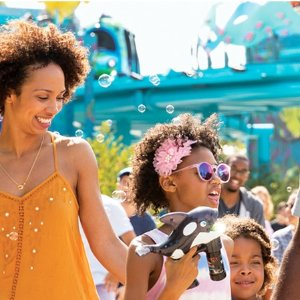 From $39.99 Summer Fun Flash Sale @ Sea World