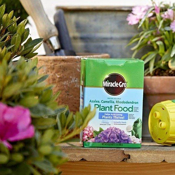 水溶性开花植物酸性养料,杜鹃绣球都可