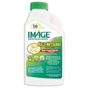 Amazon.com : Image 100099405 Kills Nutsedge Concentrate, 24 Ounce : Garden & Outdoor