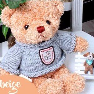 低至$19.5 (原价$93)Living Social  会说话的泰迪小熊 记录你的甜言蜜语