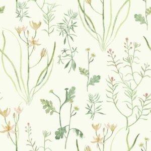 Watercolor Wildflowers 墙纸