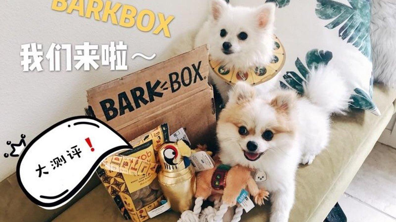 叮咚!热呼呼的BARKBOX测评报告来了 | 北美狗爸狗妈们看过来❗️