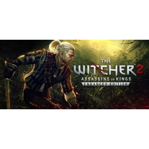 BESTON PUREThe Witcher 2: Assassins of Kings Enhanced Edition