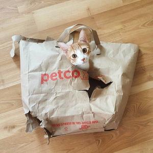 低至3.5折 + 额外8折Petco 全场大促,狗粮猫粮猫砂也参加