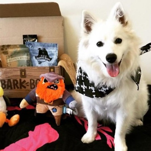 Double First BoxBarkBox 6 or 12 Month Subscription
