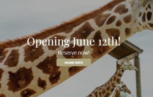 6月12日去Elmvale喂长颈鹿吧 可爱小动物等你萌来6月12日去Elmvale喂长颈鹿吧 可爱小动物等你萌来