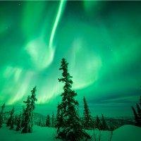 <5天>2次小木屋观测极光+可参加陆路/飞跃北极圈、珍娜温泉、狗拉雪橇、冰钓+赠送北极光观测证书