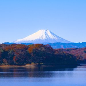 From $529San Francisco - Tokyo RT Multiple Dates