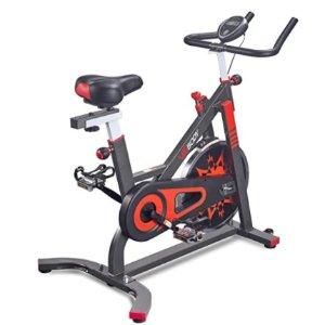 VIGBODY Exercise Bike Indoor Cycling Bicycle Stationary Bikes Cardio Workout Machine