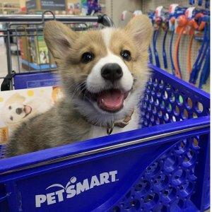 满$30立享8.3折PetSmart 礼卡热卖 多面值可选 全场单件商品店内取货8.3折