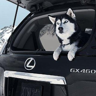 实用豪车折扣 毕业返现千元Lexus 雷克萨斯 盛夏8月新车优惠大全