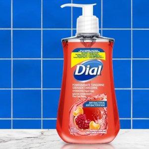 Dial 抗菌洗手液221毫升