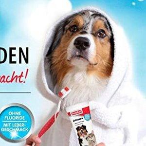 100g仅€2.99 原价€4.99Beaphar 宠物牙膏 猫狗都能用 减少牙菌斑 预防牙结石