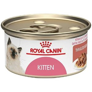 Top Rated Kitten Food @ Petco 30% Off First Repeat Delivery