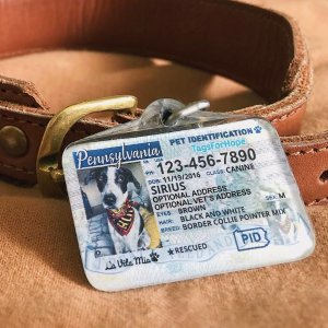$26即可定制+免邮TagforHope 个性化驾照同款宠物ID 可定制9个国家+各个省份