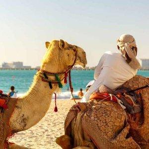 史低价!£69起异域风情摩洛哥2-3晚免签马拉喀什之旅 79折包含酒店和往返机票