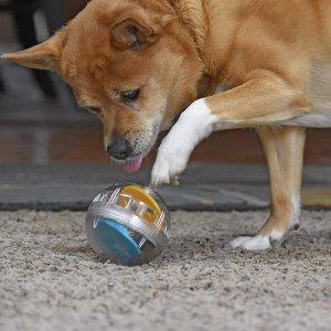 $7.49(原价$13)Pet Zone 狗狗智商增长球 锻炼大脑 预防痴呆 减少拆家