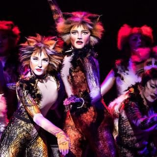 $26起 世界四大经典音乐剧之一《猫》音乐剧 2019-2020 北美巡演