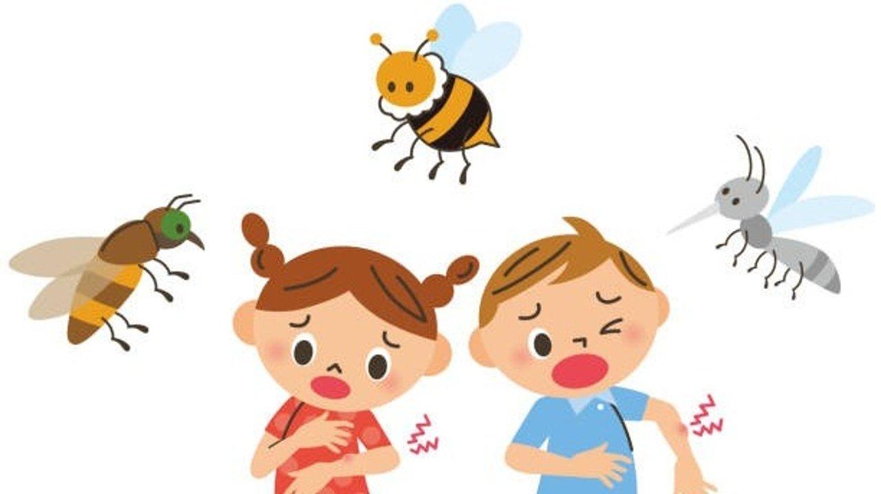 美国常见蚊虫叮咬全解|床虫/蜱虫/恙螨/蜜蜂/红火蚁/蚊子/蜘蛛等,怎么区分被哪种蚊虫叮咬?被叮咬后有何症状、如何处理?