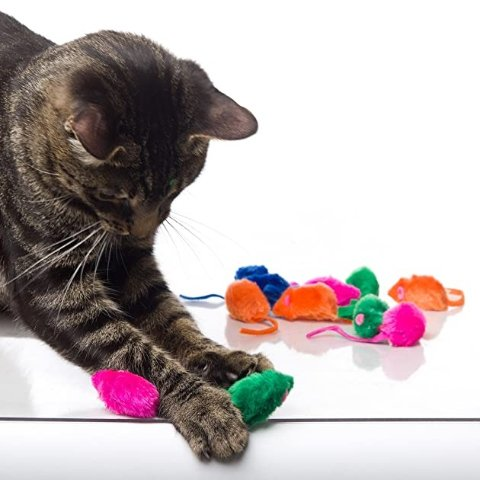 Hartz Just For Cats Cat Toy