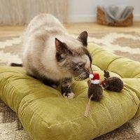 OurPets 猫咪玩具2件套