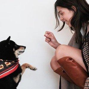 $110起 酷女孩必备Maje官网 2019秋季新款重磅来袭