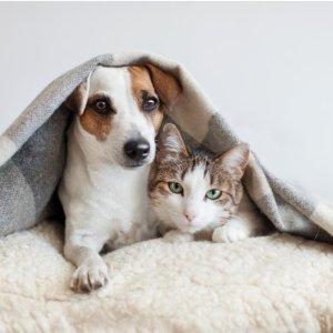 6.7折起 可伸缩狗绳€16.99Amazon 宠物用品闪促合集 食盆、水盆、背袋、垫子统统都有