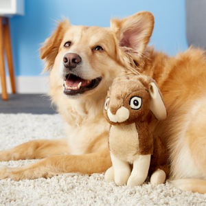20% OffHundreds of Toys  @ Chewy.com