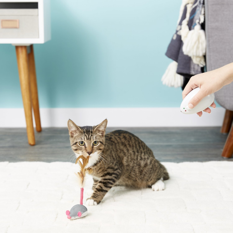 Up to 25% OffPetlinks Selected Cat Toys on Sale