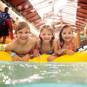 套房$65/晚起 入住6人+免费进入水上乐园Wisconsin Dells 大狼屋度室内水上乐园度假村