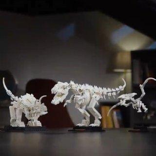 $59.99 11月1日上市預告:LEGO官網 ideas系列 恐龍化石21320