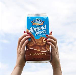 Almond Breeze Dairy Free Almondmilk, Chocolate, 8 Ounce Pack of 4